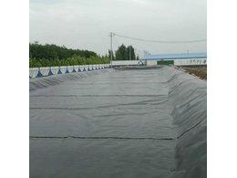 青州7000立方黑膜沼气工程